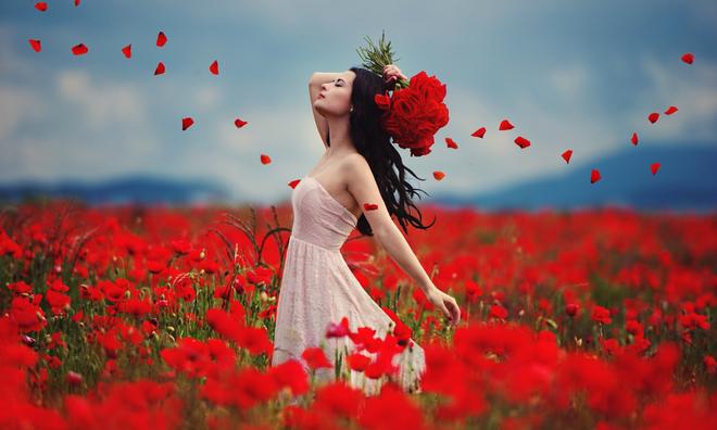 Vận đào hoa, chuyện tình duyên của 12 con giáp trong tháng 11 - VnExpress iOne