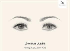 soi-long-may-doan-van-menh-va-tinh-cach-3