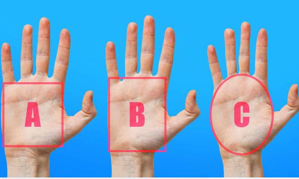 Đọc vị người khác qua hình dáng lòng bàn tay - VnExpress iOne