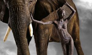 Sự kết hợp hoàn hảo giữa thế giới loài người và động vật