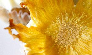 Làm bông hoa từ quả dứa dễ lắm