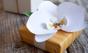 Tự làm hoa phong lan trang trí hộp quà