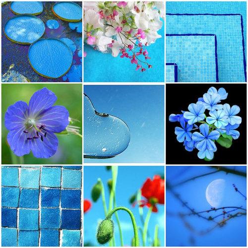 blue-option-2-520695-1372656485_500x0.jp