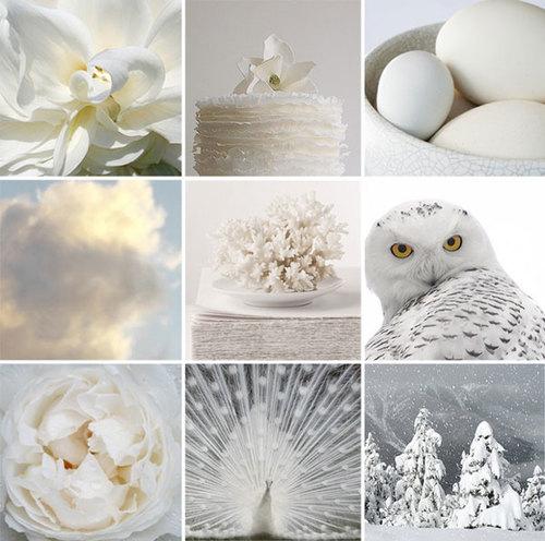 màu trắng đẹp