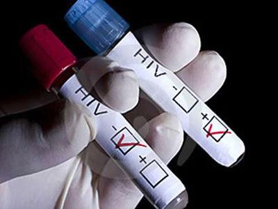 hive-650559-1372632602_500x0.jpg