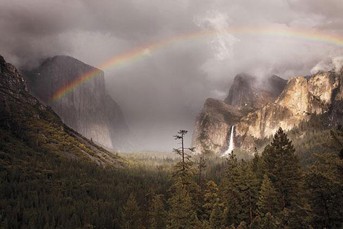 landscape-highly-honored--yosemite-valle