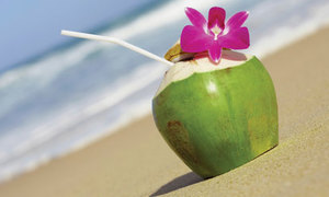 Đồ giải nhiệt tránh nóng từ dừa tươi