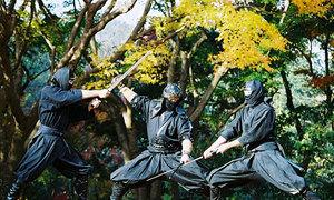 7 điều ít biết về Ninja
