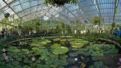 thay mới nhà vườn kiến trúc nhà vườn đẹp những kiểu nhà hiện đại tonghop1.