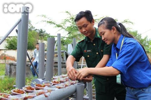 Chuyển giao kỹ thuật trồng rau bằng phương pháp thuỷ canh.