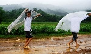Học sinh Đà Nẵng nghỉ học vì bão số 11