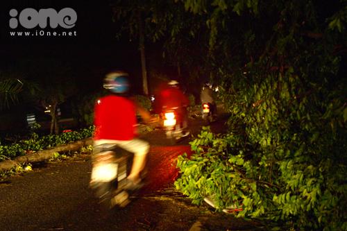 Người dân đi lại bằng đèn xe trên tuyến đường Nguyễn Tri Phương trong đêm 15/10. Nhiều cây xanh lâu năm ở công viên 29/3 đã ngã đổ, tràn ra tuyến đường này.