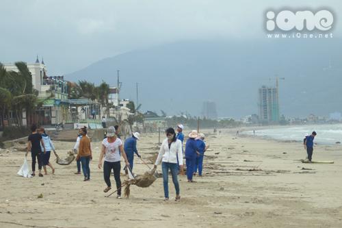 Tại bãi các biển thuộc quận Sơn Trà, Ngũ Hành Sơn, Liên Chiểu, nhiều người dân, sinh viên, các cô chú Công ty Môi trường Đô thị đang tích cực dọn dẹp rác thải ngay sau khi bão tan.