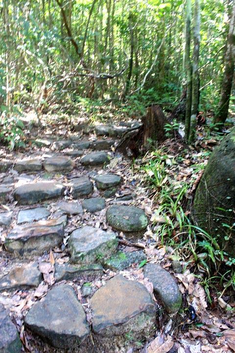Đi theo những phiến đá được lót thành con đường bộ ven suối, du khách bắt đầu hành trình khám phá của mình.