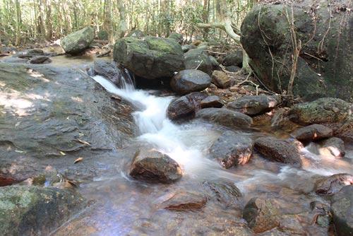 Dòng suối men theo các kẽ đá, lúc chảy cuồn cuộn, lúc lững lờ.