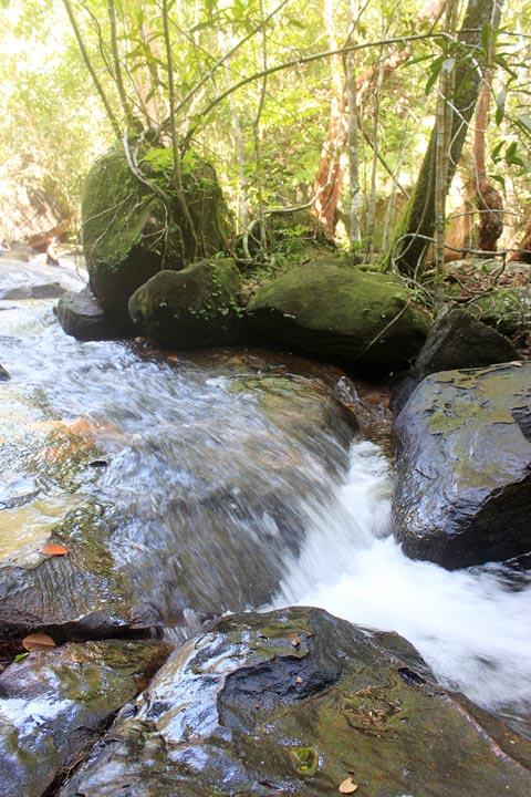 Các phiến đá ven suối phủ đầy rêu nên rất trơn trợt, là một thử thách đối với du khách nếu muốn vượt qua.