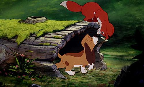 Nhà sản xuất của bộ phim hoạt hình Cáo và chó săn (1981) là Wolfgang Reithermanđã mang chú cáo cưng ngoài đời của mình cho các họa sĩ sử dụng làm mẫu vẽ.