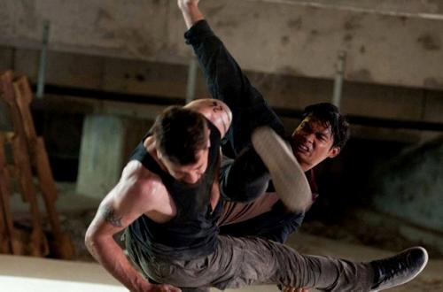 Người bảo vệ 2 -The Protector 2 (2013)
