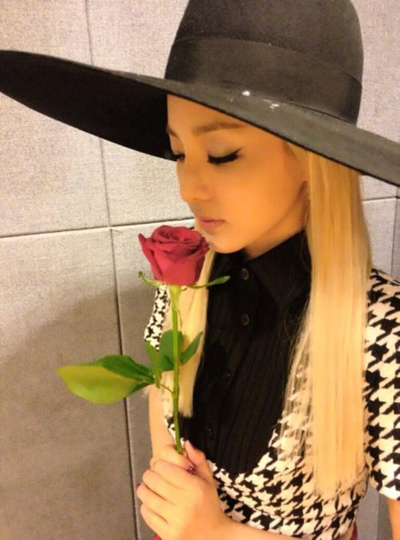 dara-sentimental-with-a-rose-7305-138560