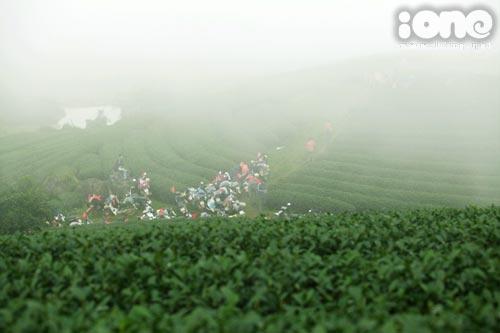 Nhiệt độ thay đổi nhay chóng, các đồi chè tràn ngập sương khiến khung cảnh trở nên huyền ảo hơn.