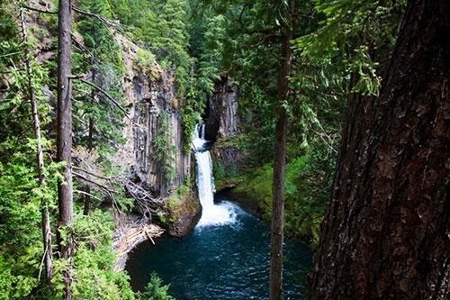 Thác nước Toketee thuộc rừng quốc gia Umpqua. Cảnh vật và không khí tại Umpqua được đánh giá là xanh mướt và khá ẩm ướt.