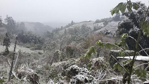 Sáng 15/12, nhiệt độ giảm xuống còn -1 độ C tại Sapa, khu vực đèo Ô Quý Hồ (thị trấn Sa Pa, huyện Sa Pa, tỉnh Lào Cai) ở độ cao từ 1500m trở lên xuất hiện tuyết rơi ngày càng dày.