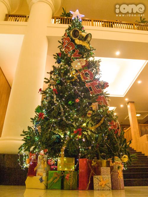Nhiều cây thông lớn làm sẵn cao hơn 5m được nhìn thấy ở nhiều nhà hàng, khách sạn, TTTM... tại Đà Nẵng.