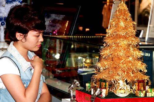 Xung quanh cây thông còn được lắp phần thiết bị chiếu sáng để phần thưởng ngoạn của khách thăm quan thêm long lanh.
