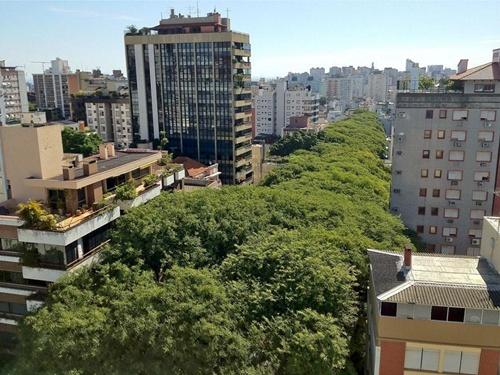 Những tán cây cao và dài tăm tắp nôi nhau trong lòng thành phố
