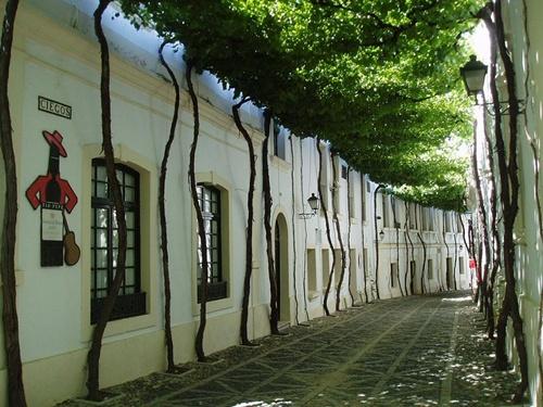 Đường Jerez (Tây Ban Nha).