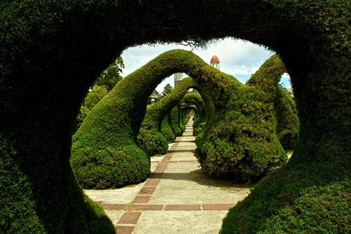 Parque Francisco Alvarado (Costa Rica).