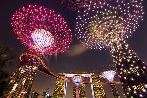 Supertree Grove toả sáng rực rỡ trong đêm. Phía xa là khách sạn Marina Bay Sands, một biểu tượng mới của đất nước Singapore. Ảnh: coolephotography.