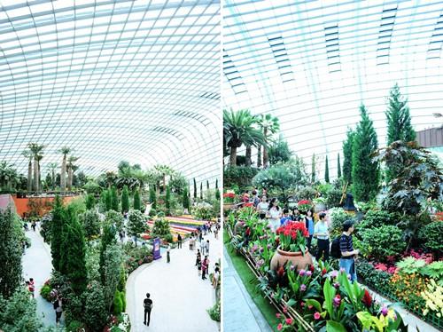 Được mệnh danh là ngôi vườn trong nhà lớn nhất thế giới với hình dạng vỏ trứng, có kết cấu bằng thép cùng những tấm kính thuỷ tinh chịu lực và hệ thống điều hoà không khí mát mẻ. Ảnh: ladyironchef.