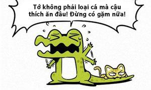 Fun pic: Cá sấu không phải là cá