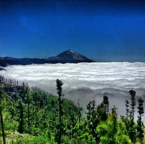 Biển mây rộng ngút tầm mắt ở Tây Ban Nha.