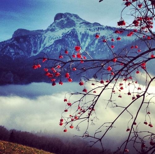 Áo là một quốc gia với 60% diện tích đồi núi, gồm một phần của dãy Alpơ  nên vào mùa đông, nơi đây chìm trong khung cảnh nên thơ của những đám mây bay bên lưng chừng núi và đỉnh trắng xóa màu tuyết phủ.