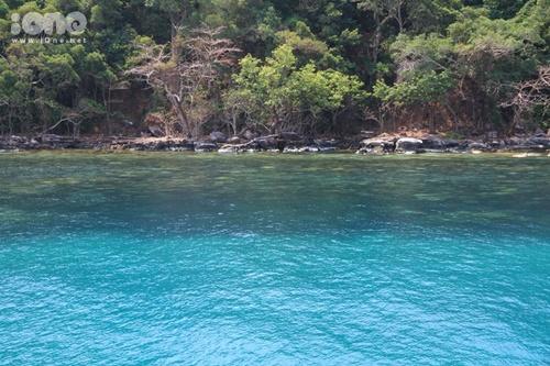 Biển và rừng hoà vào nhau tạo thành một bức tranh thiên nhiên tuyệt đẹp, khiến Koh Rong cuốn hút giới trẻ bởi vẻ hoang sơ hiếm có.