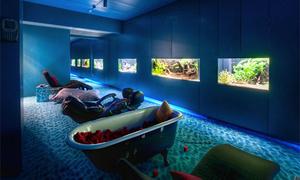 Nơi ngủ trưa hấp dẫn cho nhân viên ở các công ty nước ngoài