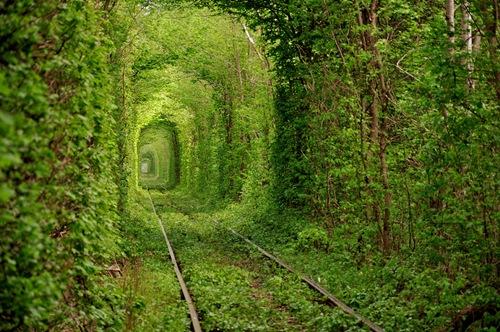 Được xem là một trong những địa điểm lãng mạn nhất thế giới - Đường hầm tình yêu, toạ lạc tại ngôi làng nhỏ của vùng Klevan (Ukraina).