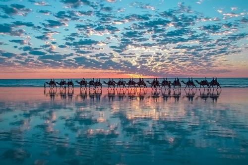 Cưỡi lạc đà bên bờ biển là một trong những điều thú vị bạn sẽ trải qua ở Broome (Úc).