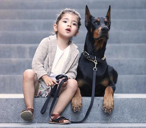Tài khoản Instagram đăng tải những hình ảnh đáng yêu của cô bé xinh xắn Siena (3 tuổi) cùng chú chó cưng Buddha, thuộc giống chó Doberman, đang tạo nên cơn sốt trên mạng khi lượt theo dõi liên tục tăng đến hơn 17 nghìn.