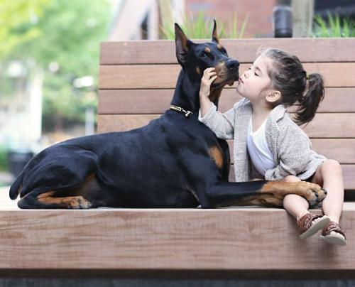 Siena rất yêu thương người bạn nhỏ thân thiết và không ngần ngại thể hiện tình cảm của mình cho nó.