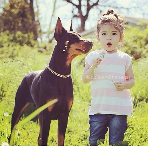 Buddha không chỉ là người bạn thân mà còn là chú chó trung thành, một vệ sĩ đáng tin cậy của cô bé.
