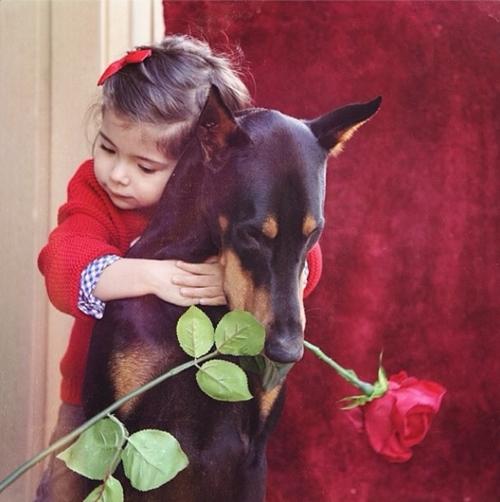 Cô bé luôn tìm đến bên chú chó cưng những lúc buồn.