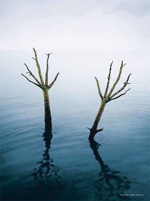 Sự sống của loài người bị đe dọa như những cành khô chờ ngày rụng xuống khi hiện tượng băng tan, nước biển dâng và nhiệt độ tăng đang diễn ra.