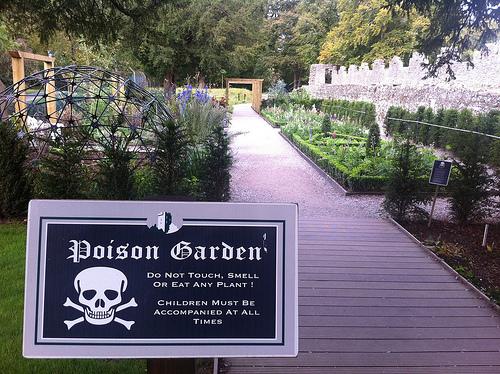 Không được chạm, ngửi hoặc ăn bất kì cây trồng nào tại đây. Trẻ em phải luôn luôn được trông chừng cẩn thận  Lời cảnh báo từ Khu vườn Độc dược. Ảnh: forumfree.