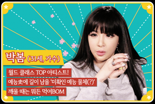 140414-ROOMMATE-2NE1s-BOM-the-unidentified-variety-show-object-draws-attention.png