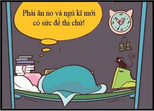 Ăn no, ngủ kĩ không có nghĩa là ngủ như heo, ăn như lợn đâu nhé!