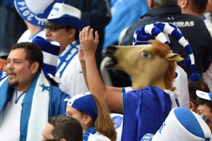 Chú ngựa Honduras.