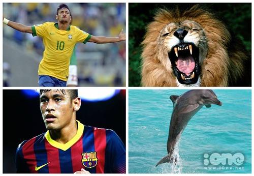 Về Brazil anh đá khác hẳn.